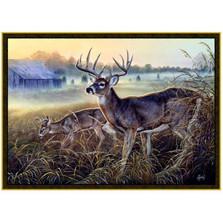 Deer Area Rug Boys Club