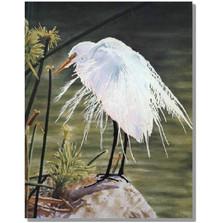 """Egret Print """"A Great Egret"""""""