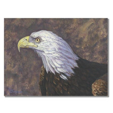 "Eagle Print ""Bald Eagle Portrait"""