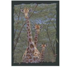"Giraffe Print ""Family Tree"""