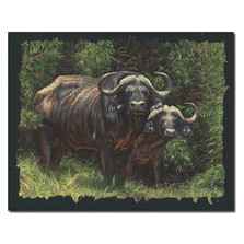 """Cape Buffalo Print """"Guardians of the Forest"""""""
