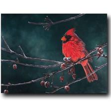"""Cardinal Print """"Snow Bird"""""""