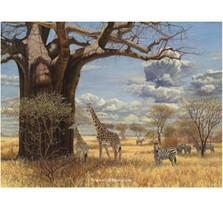 "Giraffe Print ""Under the Baobab Tree"""