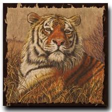 """Tiger Print """"A Regal Bengal"""""""