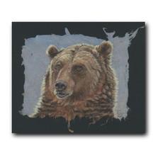 Grizzly Bear Portrait Print