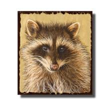 "Raccoon Print ""The Little Bandit"""