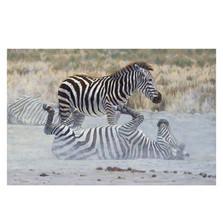"Zebra Print ""Ying and Yang"""