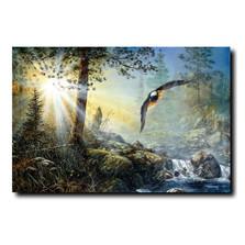 "Eagle Print ""Wings in the Mist"" | Jim Hansel | JHwingsinmist"