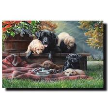 "Dog Print ""Cozy Moments"""