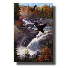 "Eagle Print ""Gooseberry Falls"""