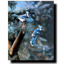 """Blue Jay Print """"A Touch of Blue"""""""