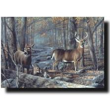 "Deer Print ""Broken Silence"""