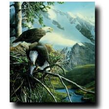 "Eagle Print ""Majestic View"""