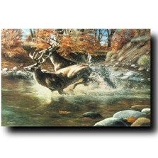"Deer Print ""On The Run"""