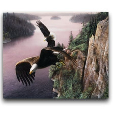 """Eagle Print """"Wings Over the St. Croix"""""""