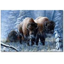 "Bison Print ""Winter Respite"""