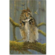 Owl and Hummer Wood Wall Art