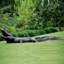 Large Alligator Bronze Fountain Statue