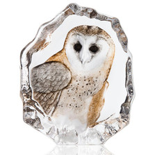 Barn Owl Painted Crystal Sculpture | 34200