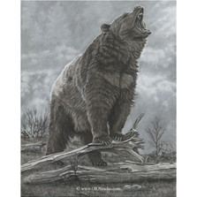 "Bear Print ""Last Stand"""