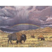 "Buffalo Print ""Where The Buffalo Roam"""