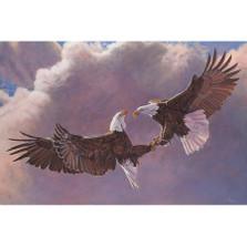 "Eagle Print ""Clash Of The Titans"""