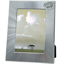 Frog 5x7 Photo Frame