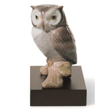 Lucky Owl Porcelain Figurine