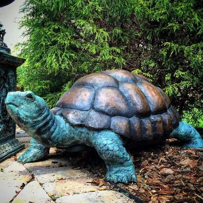 Turtle Bronze Fountain Statue | Metropolitan Galleries | SRB058480-1