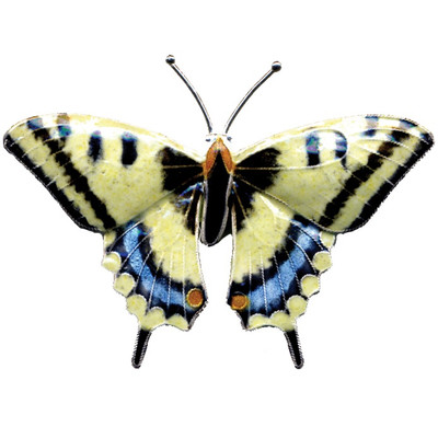 Swallowtail Butterfly Cloisonne Pin   Nature Jewelry
