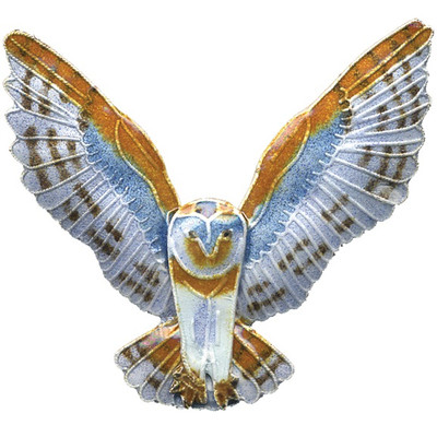 Barn Owl Cloisonne Pin | Nature Jewelry