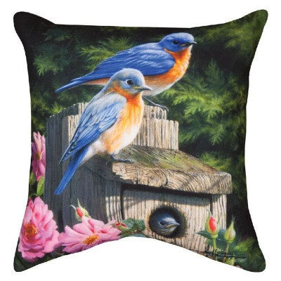 Birdhouse Indoor/Outdoor Throw Pillow