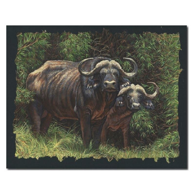 "Cape Buffalo Print ""Guardians of the Forest"""