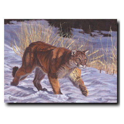 "Cougar Print ""On The Prowl"""