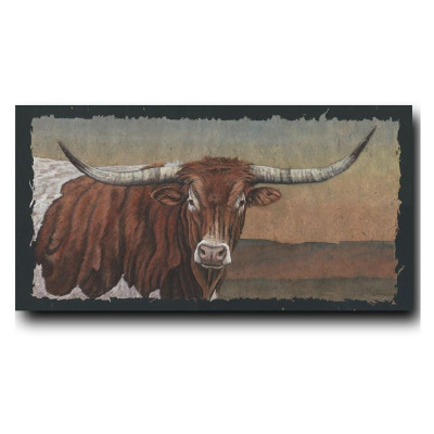 Longhorn Country Print