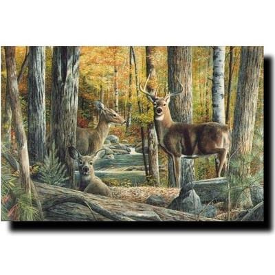 "Deer Print ""Broken Silence II"""