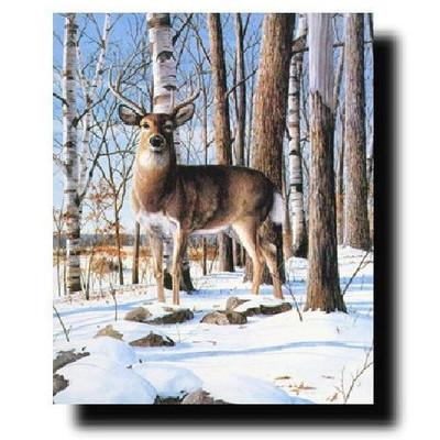 "Deer Print ""Simply Curious"""