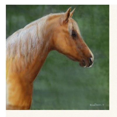 "Horse Print ""Palomino"""