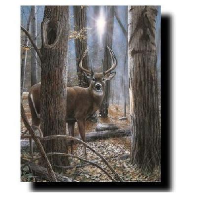 "Deer Buck Print ""Woodland Sentry"""