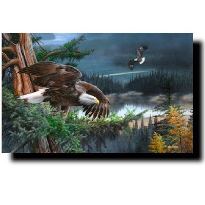 """Eagle Print """"Wings of Freedom"""""""
