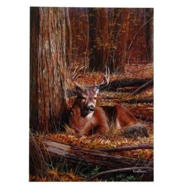 """Deer Print """"Bedding Down"""""""