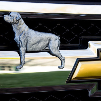 Rottweiler Grille Ornament