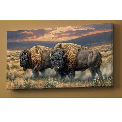 "Bison Canvas Wall Art ""Dusty Plains"""