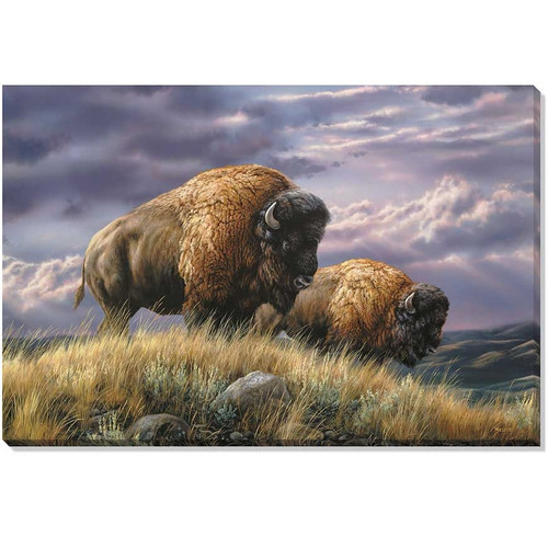 """Bison Canvas Wall Art """"Nomads of the Plains"""""""