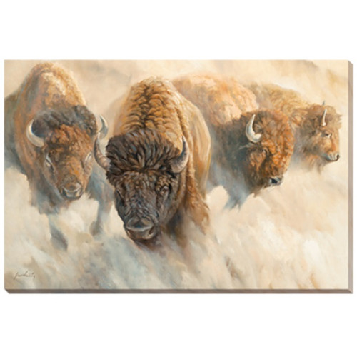"""Bison Canvas Wall Art """"Dust of Time"""""""