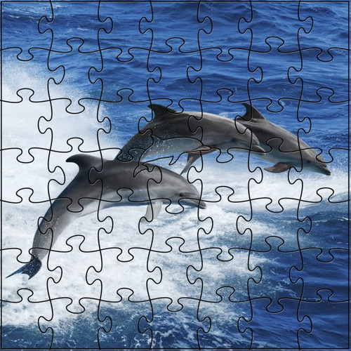 Dolphin Wooden Jigsaw Puzzle
