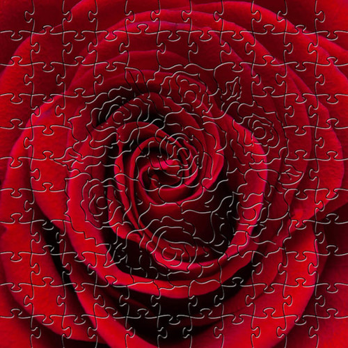 Red Rose Wooden Jigsaw Puzzle