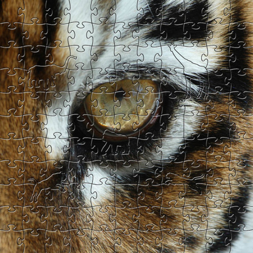 Tiger Eye Wooden Jigsaw Puzzle