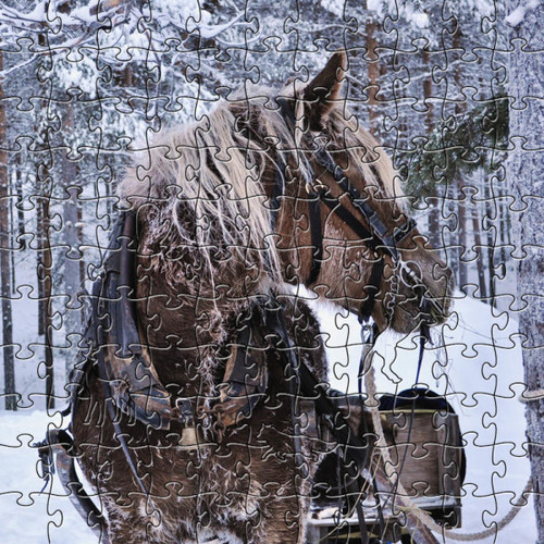 Winter Horse Wooden Jigsaw Puzzle