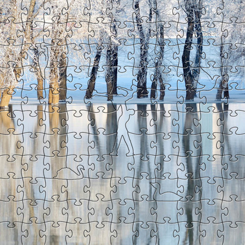 Winter Lake Wooden Jigsaw Puzzle